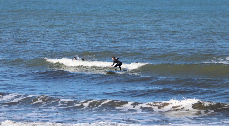 surfingchania